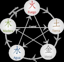 5 elementos - feng shui en la decoración - las plantas en el feng shui