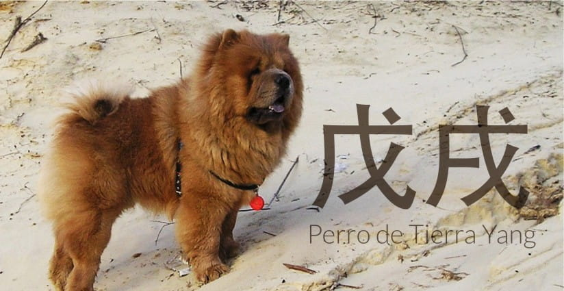 Feng Shui 2018 – Año del Perro de Tierra